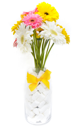 Gerberas with White Marshmallows