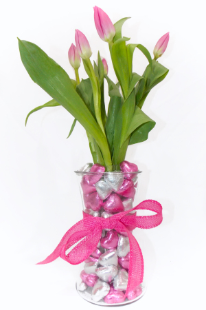 Candy Chocolate Pink Tulips