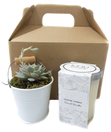 Succulent Bucket (White) and Scented Candle Pack